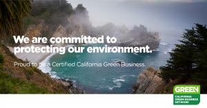 Green Business ad - ocean
