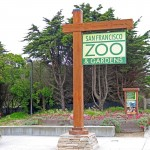 OuterParkside_SFZoo